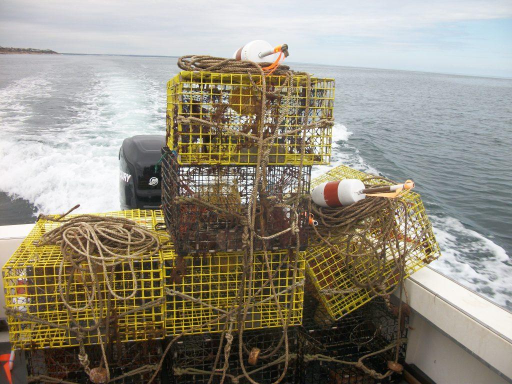 Cape Cod Rent-A lobester Trap